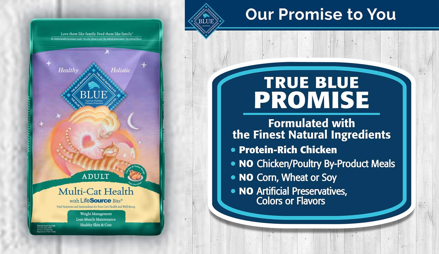 Best Dry Cat Food as the first related product of Healthy Cat Food