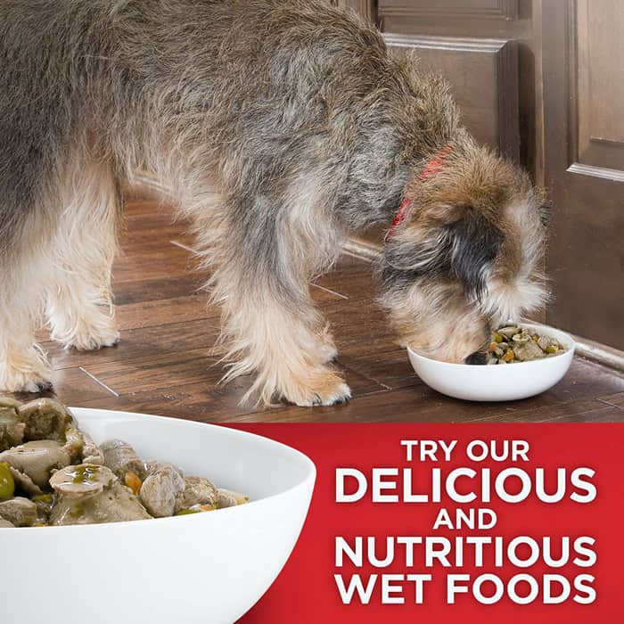 First close looking view of the Best Natural Dog Food