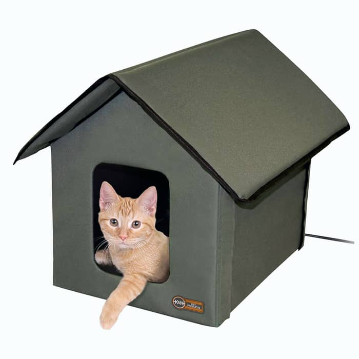 Second close looking view of Outside Cat House