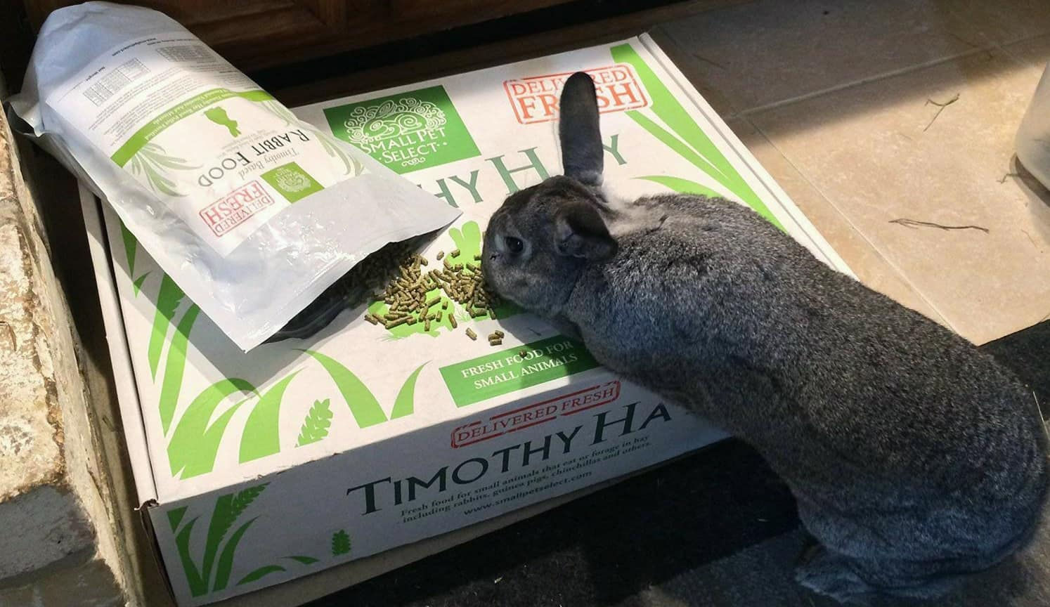 Rabbit Food Pellets as the first related product of the Best Rabbit Food